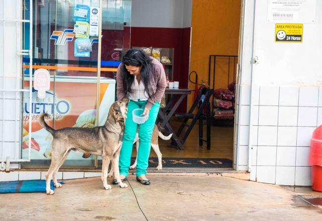empresas-ajudam-animais-de-rua-com-racao-e-agua