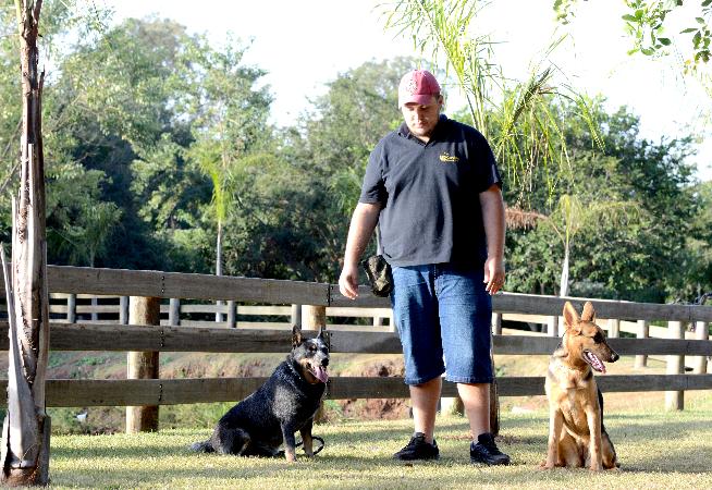 ter-um-animal-adestrado-pode-trazer-muitas-vantagens